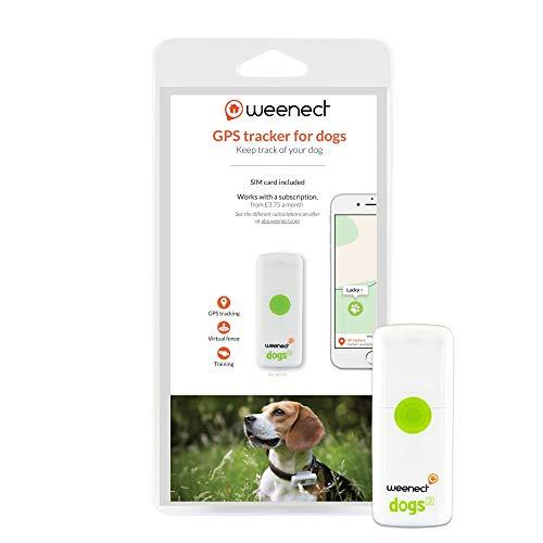 Weenect Dogs 2 - El collar GPS para perros más...