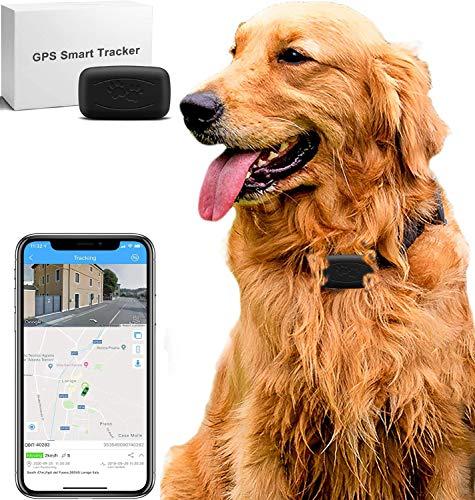 LMHOME Mini GPS localizador de rastreo de perro y...